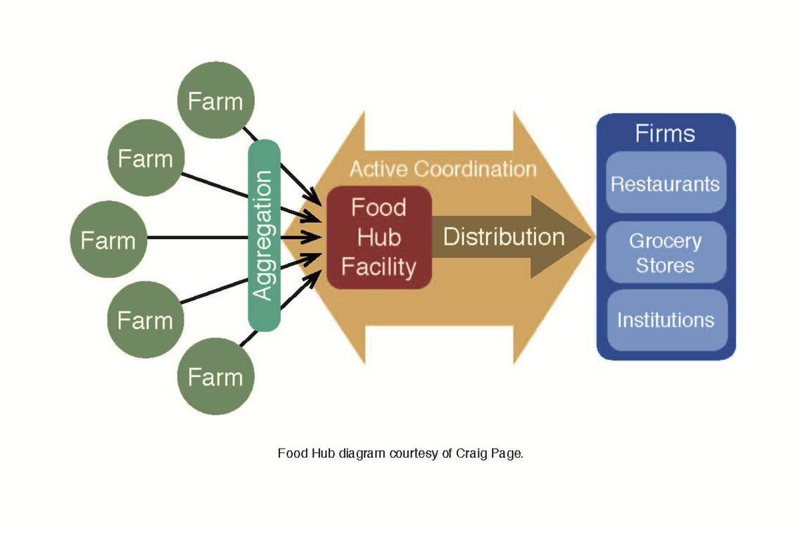 Food Hub Graphic