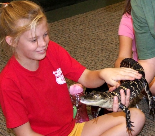 Girl and alligator