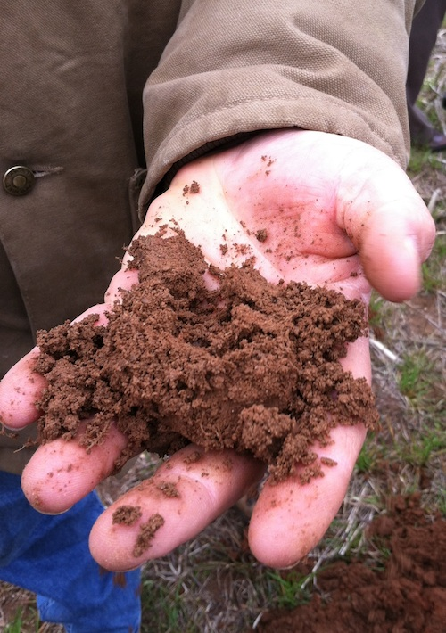 A fistful of rich soil from the University of Georgia's J. Phil Campbell Sr. Research and Education Center in Watkinsville, Ga.