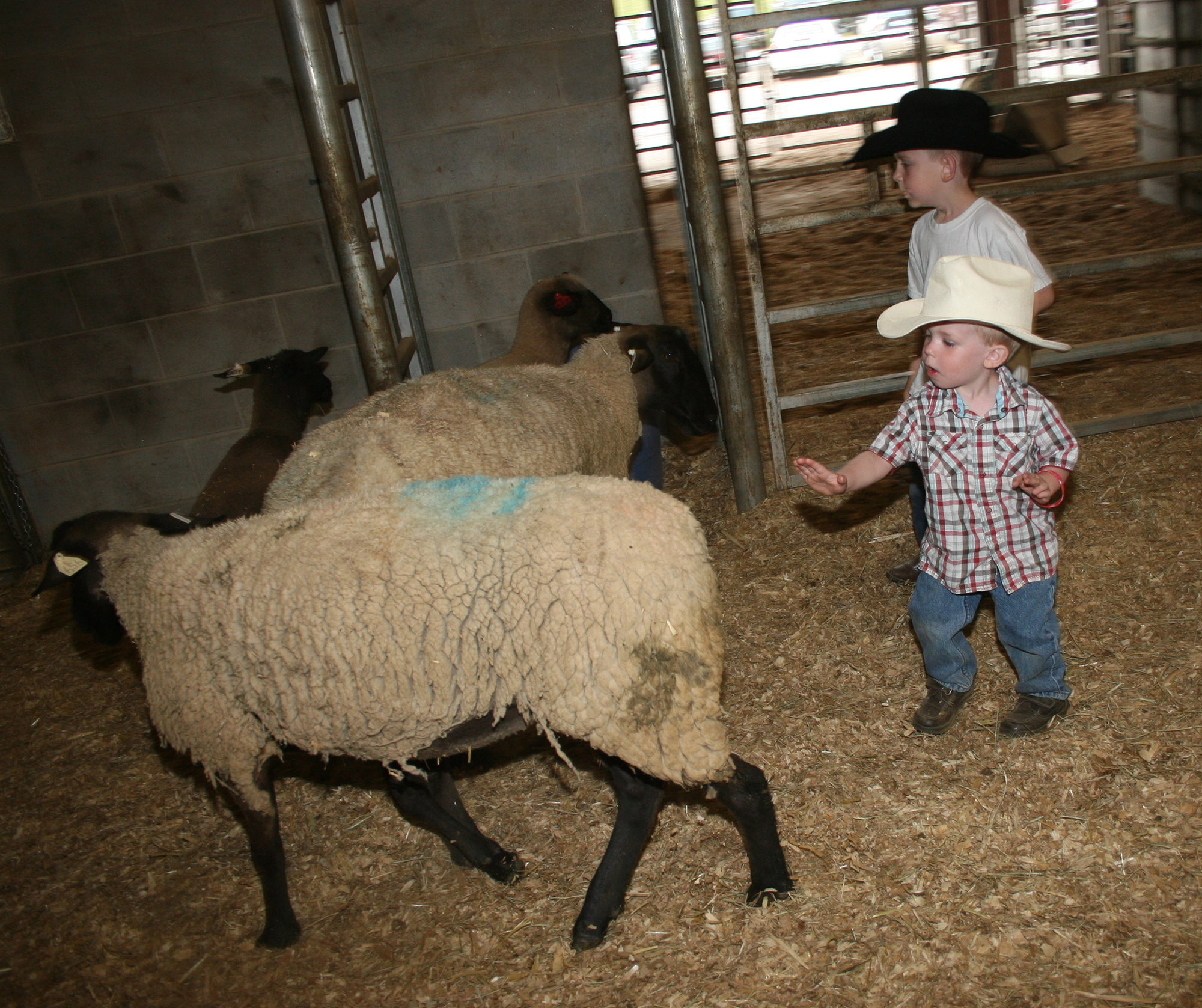 The Great Southland Stampede Rodeo runs April 18-20 in Athens. The 2013 rodeo features a whole host of new children's activities.