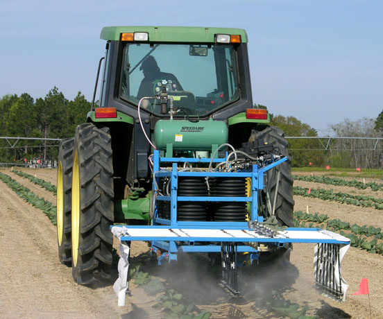 Pesticide use is critical in controlling pests like thrips, whiteflies, aphids and beet armyworms.