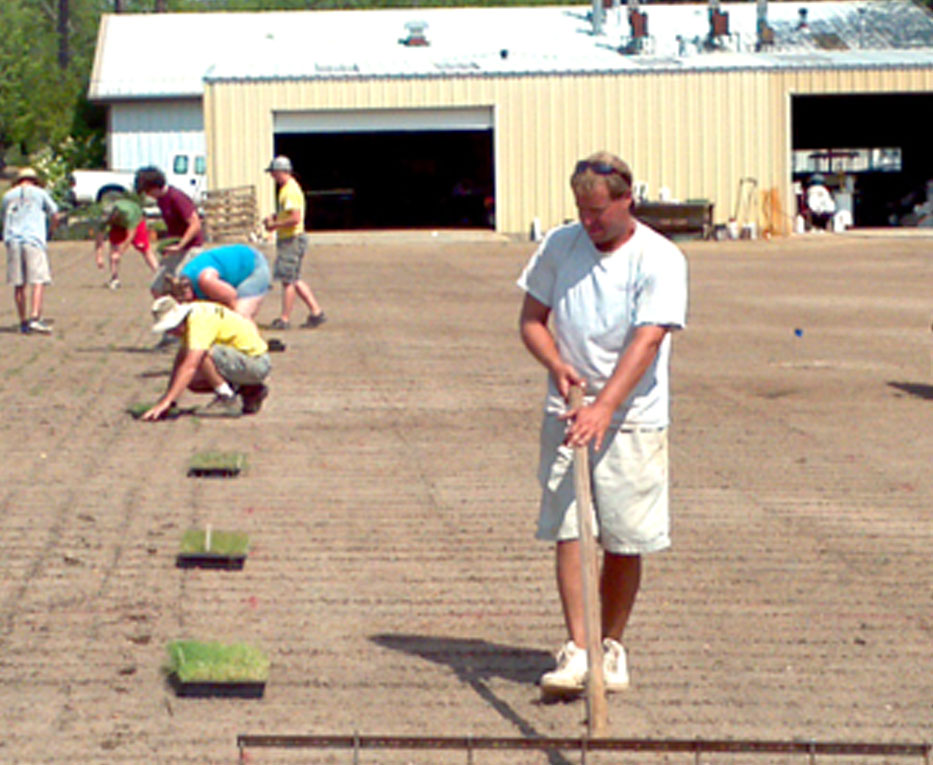Members of Brian Schwartz's turfgrass team plant a bermudagrass variety trial by hand in 2012.