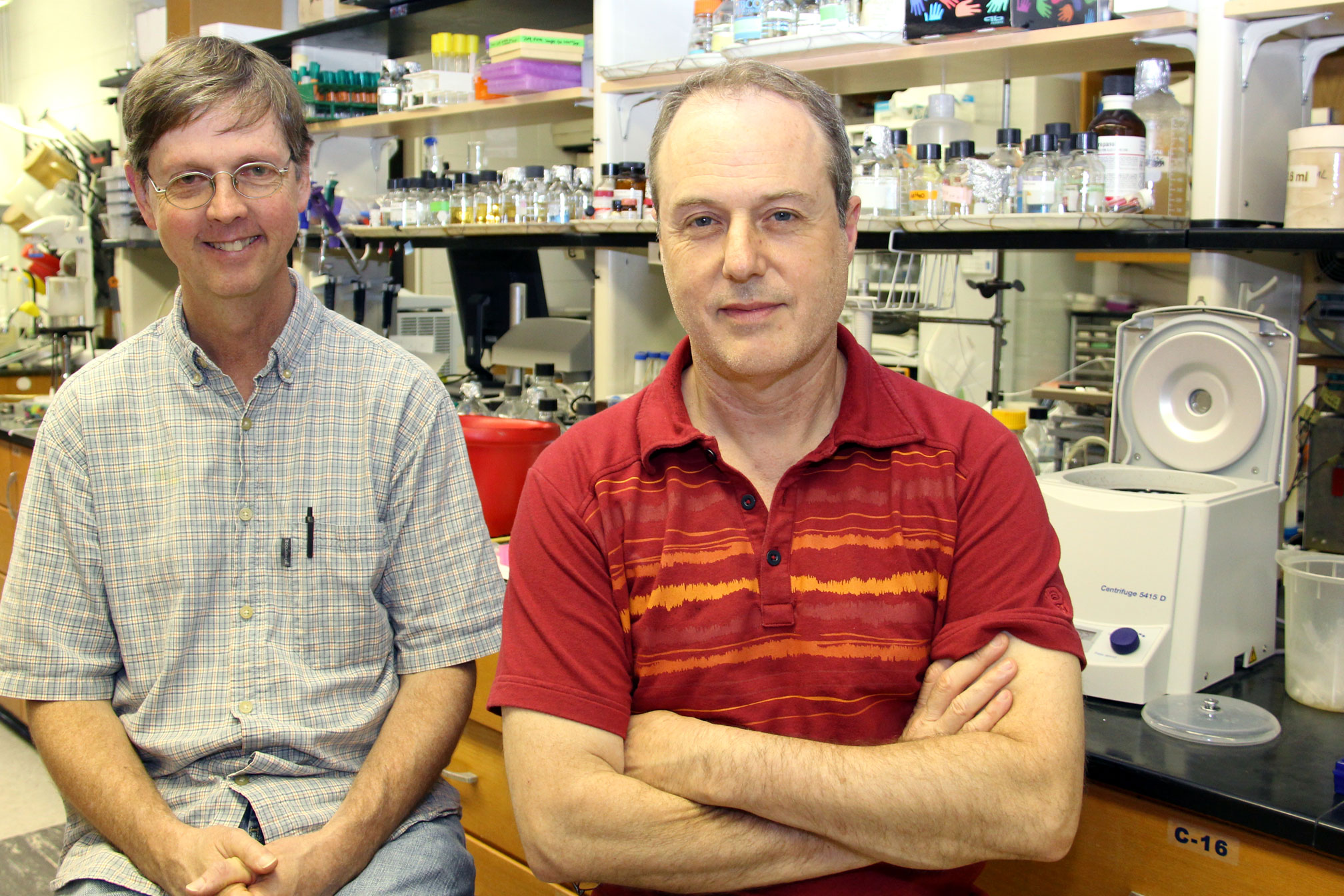 Michael Strand and Kevin D. Clark's recently published study refocused the way scientists view the development of melanin in insects.