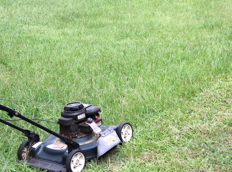 A push mower used to mow turfgrass.