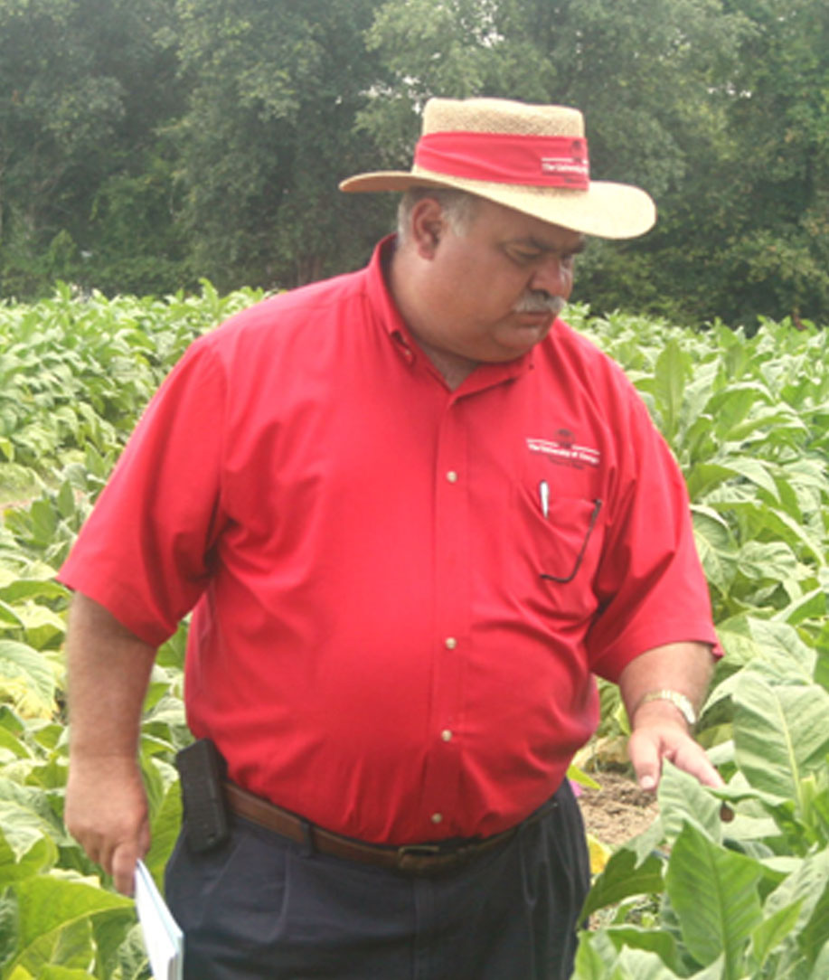 J. Michael Moore, UGA tobacco agronomist, examines tobacco stalks during the Tobacco Tour.