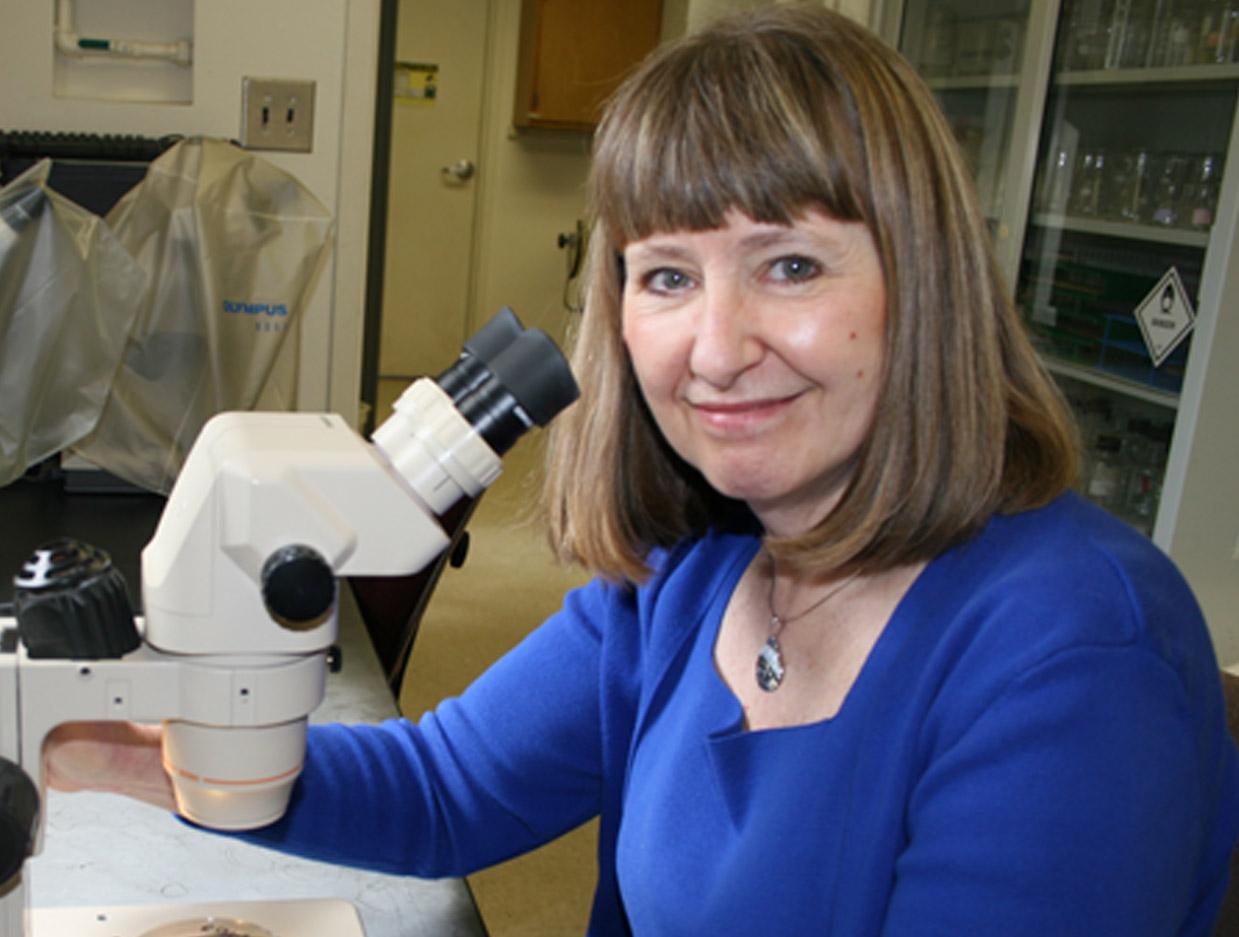 Katherine Stevenson, a plant pathologist, has been part of the University of Georgia since 1992.