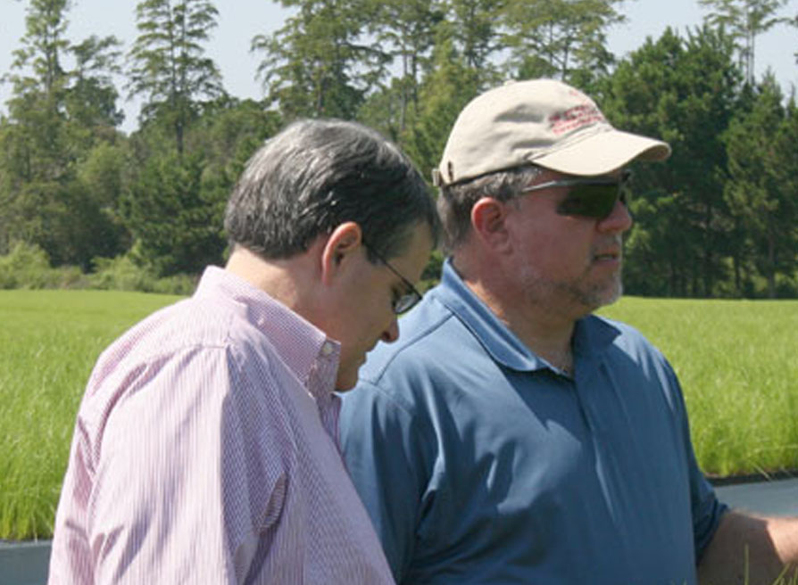 University of Georgia President Jere Morehead, left, and Terry England, chairman of the House of Representatives Appropriations Committee, examine some plants during their tour of the Lewis Taylor Farms in Tifton on Wednesday.