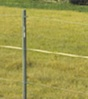 Electric fences can be an inexpensive and easy alternative option for containing livestock.