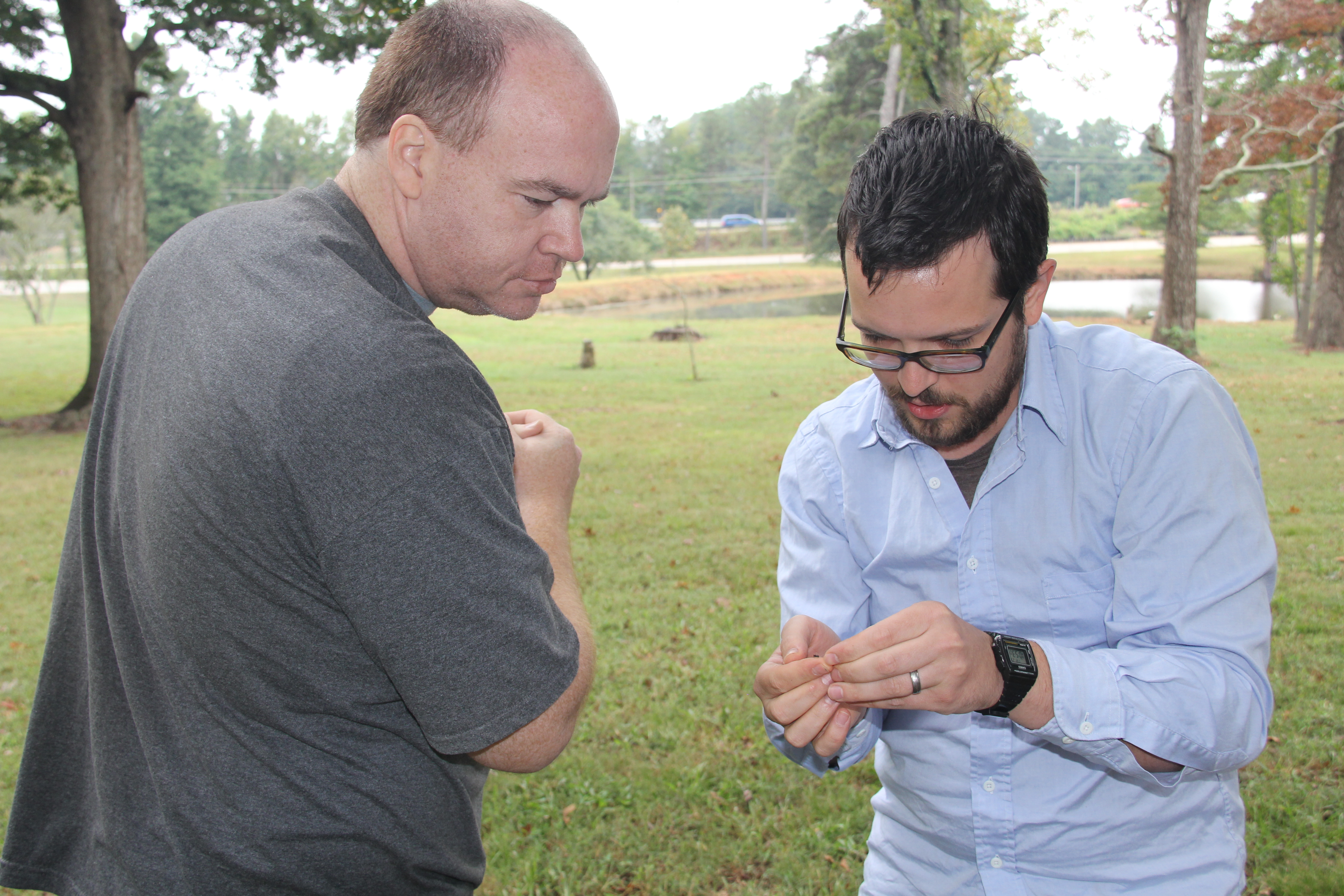 University of Georgia research technican Tyler Eaton (left) and entomologist Brendan Hunt collect fire ants on the Griffin campus. Hunt will study the ants to gain a better understanding of why fire ants have such a strong hold in the southern states.