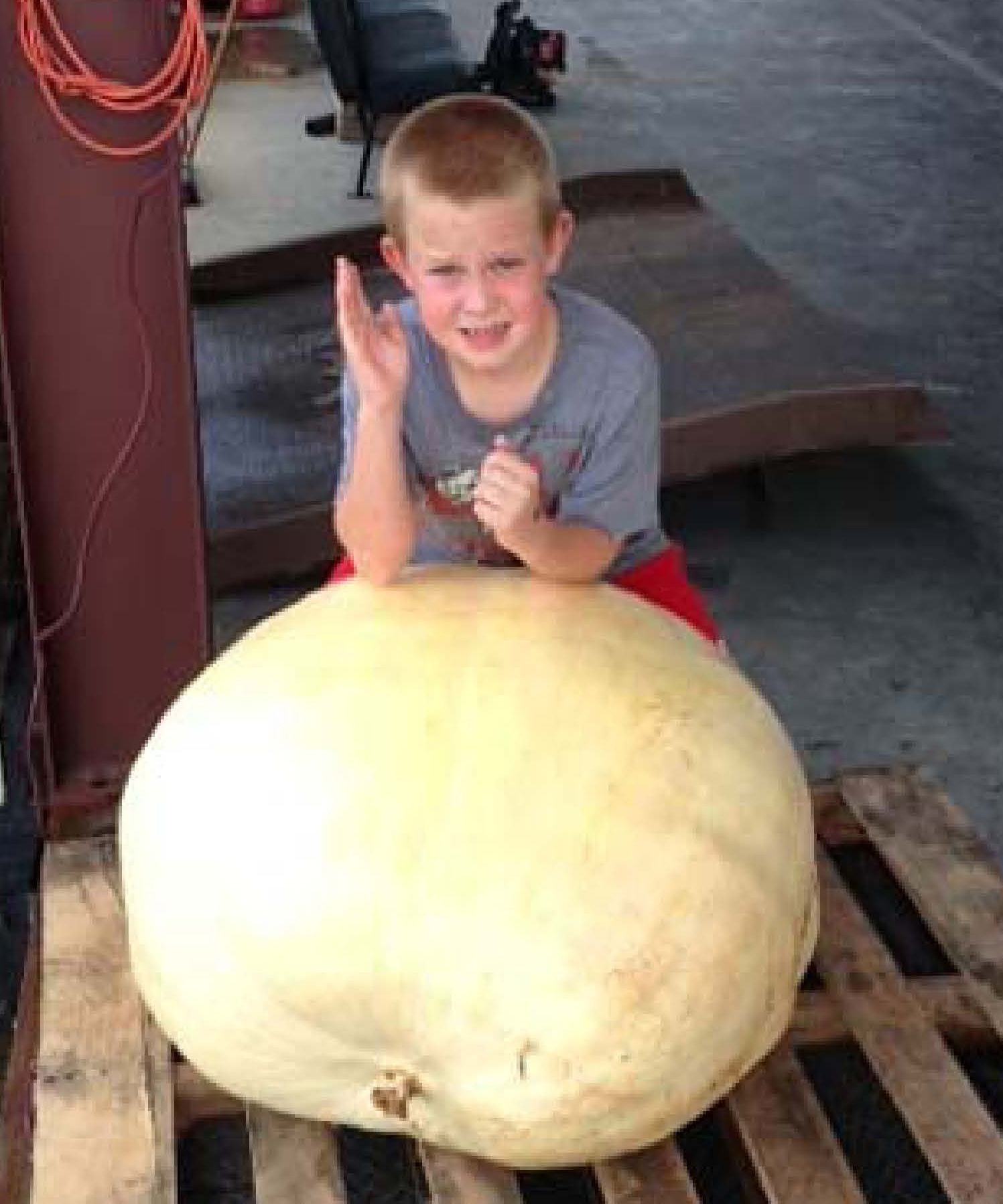 Jasper Utley took home second place in 2014 Georgia 4H Pumpkin Growing Contest with his 216 pound pumpkin.  This is Utley's second year taking home the second place prize for his pumpkin. Last year, his grew a 281-pound squash.