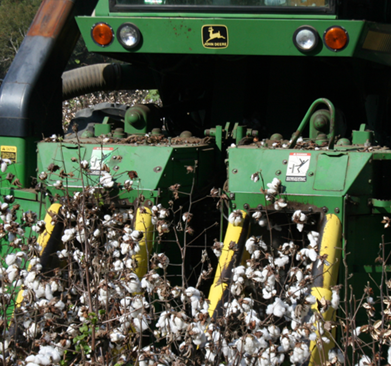 This picture shows cotton being picked at the Gibbs Farm in Tifton on Wednesday, Oct. 30, 2013.