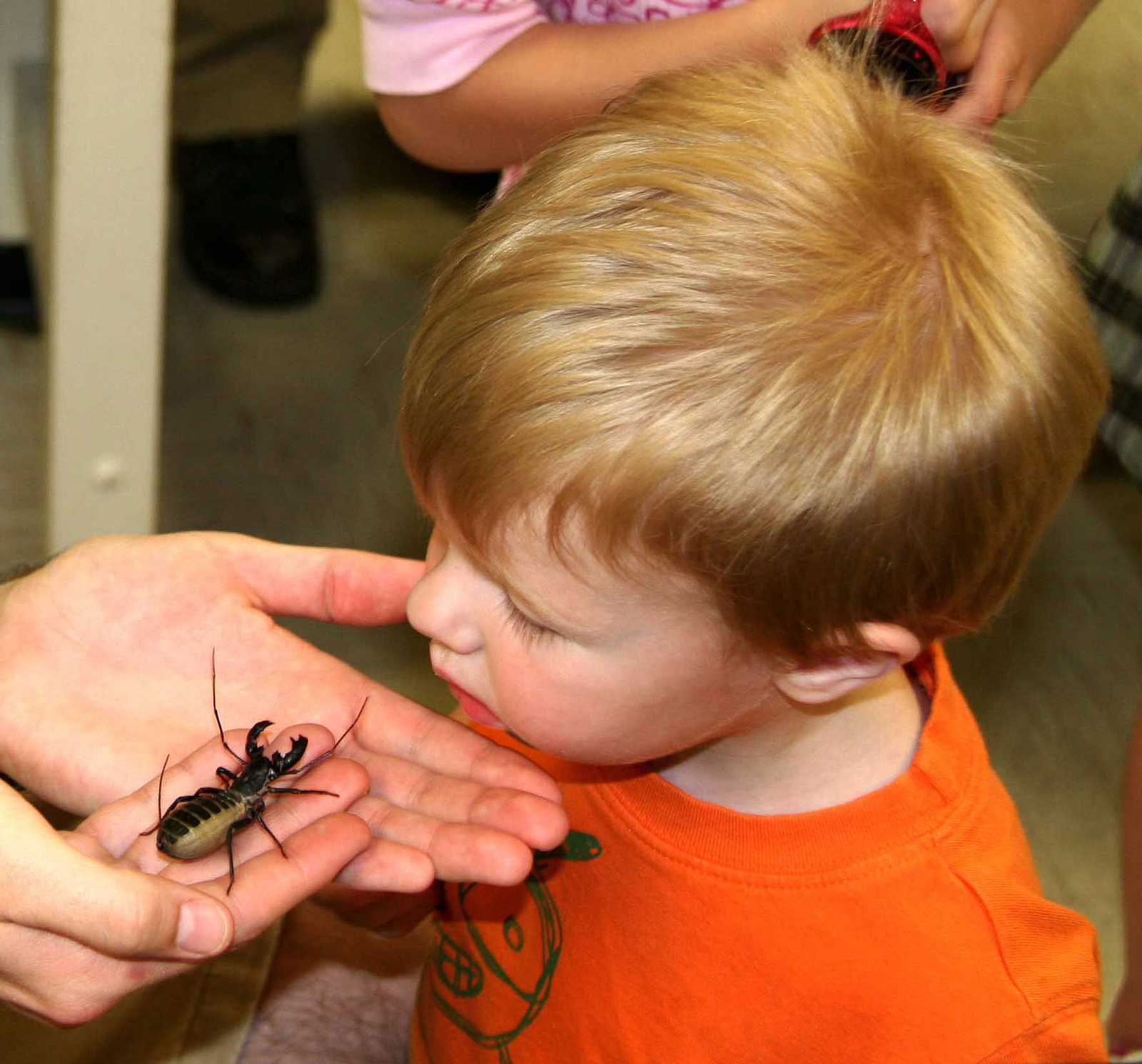 The University of Georgia Insect Zoo Open House will feature a photo booth, live bug exhibits, roach races, beetle tractor pulls and more. Daring visitors can try tasty snacks made from insects.
