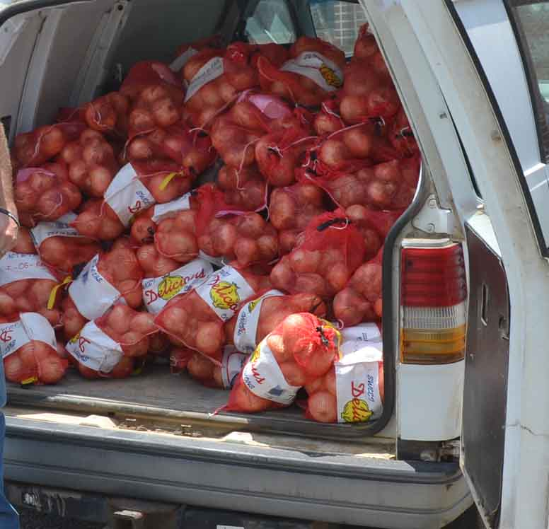 UGA Crop Quality Lab technician Daniel Jackson; Chris Tyson, Tattnall County Extension agent; and Jason Edenfield, Toombs County Extension agent with a van full of onions bound for Athens. The last samples of the day were collected from the UGA Extension office in Toombs County.