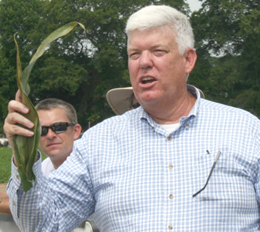 Bob Kemerait, a plant pathologist on the UGA Tifton Campus, talks about southern rust disease on corn.