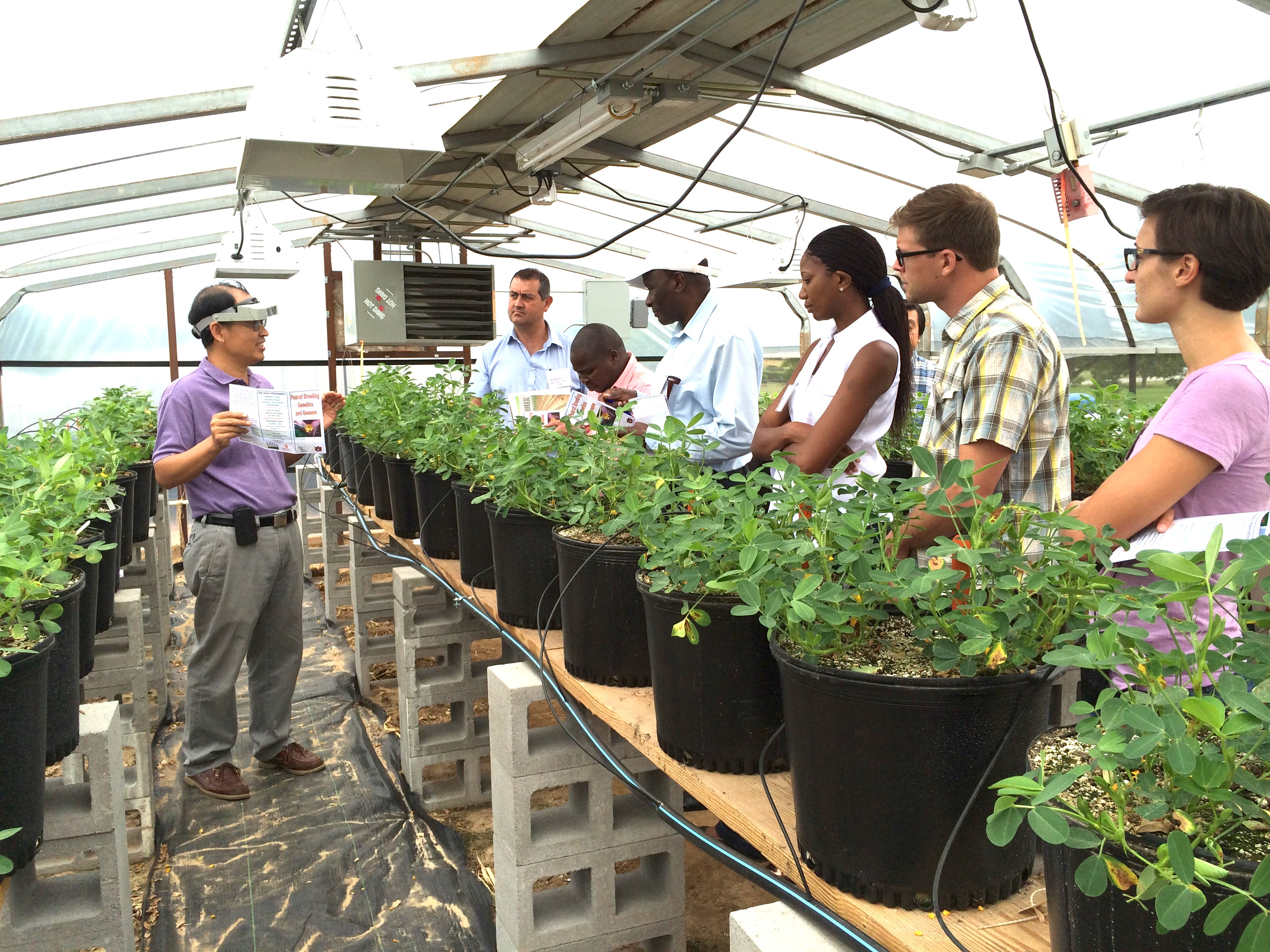 Charles Y. Chen, a peanut breeder with the USDA ARS National Peanut Research Laboratory in Dawson, leads a tour for a group of visiting international scientists.  Pictured left to right with Chen are Andrew Emmott, Amade Muitia, Isaac Minde, Alice Mweetwa, Jamie Rhoads and Dominique LaForest.