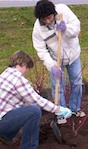 Planting trees in the late winter gives them time to establish strong root systems before summer's heat takes its toll.
