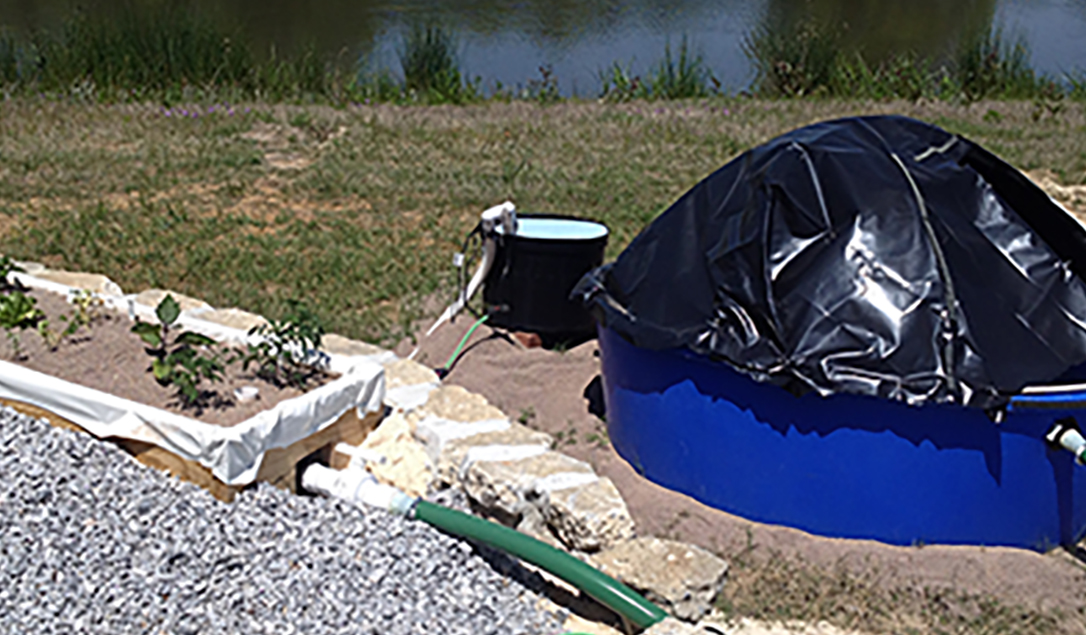 Pictured is the aquaponics system located behind the Future Farmstead located on the UGA Tifton Campus.