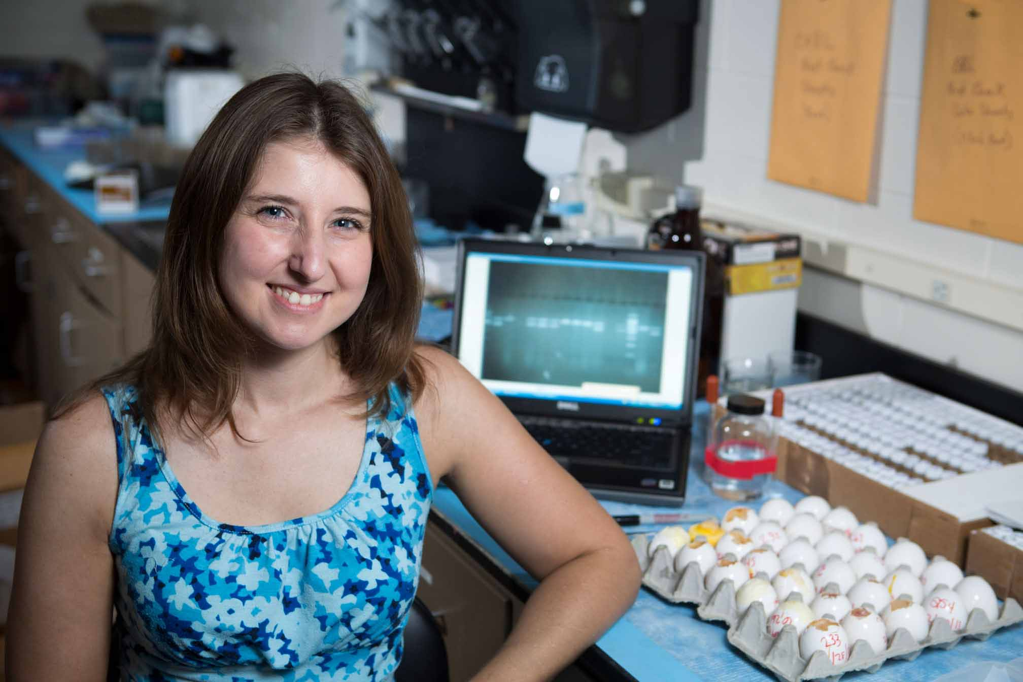 Kristen Navara, associate professor in the Department of Poultry Science, studies the ways that stress affects reproduction and growth in poultry and other organisms.