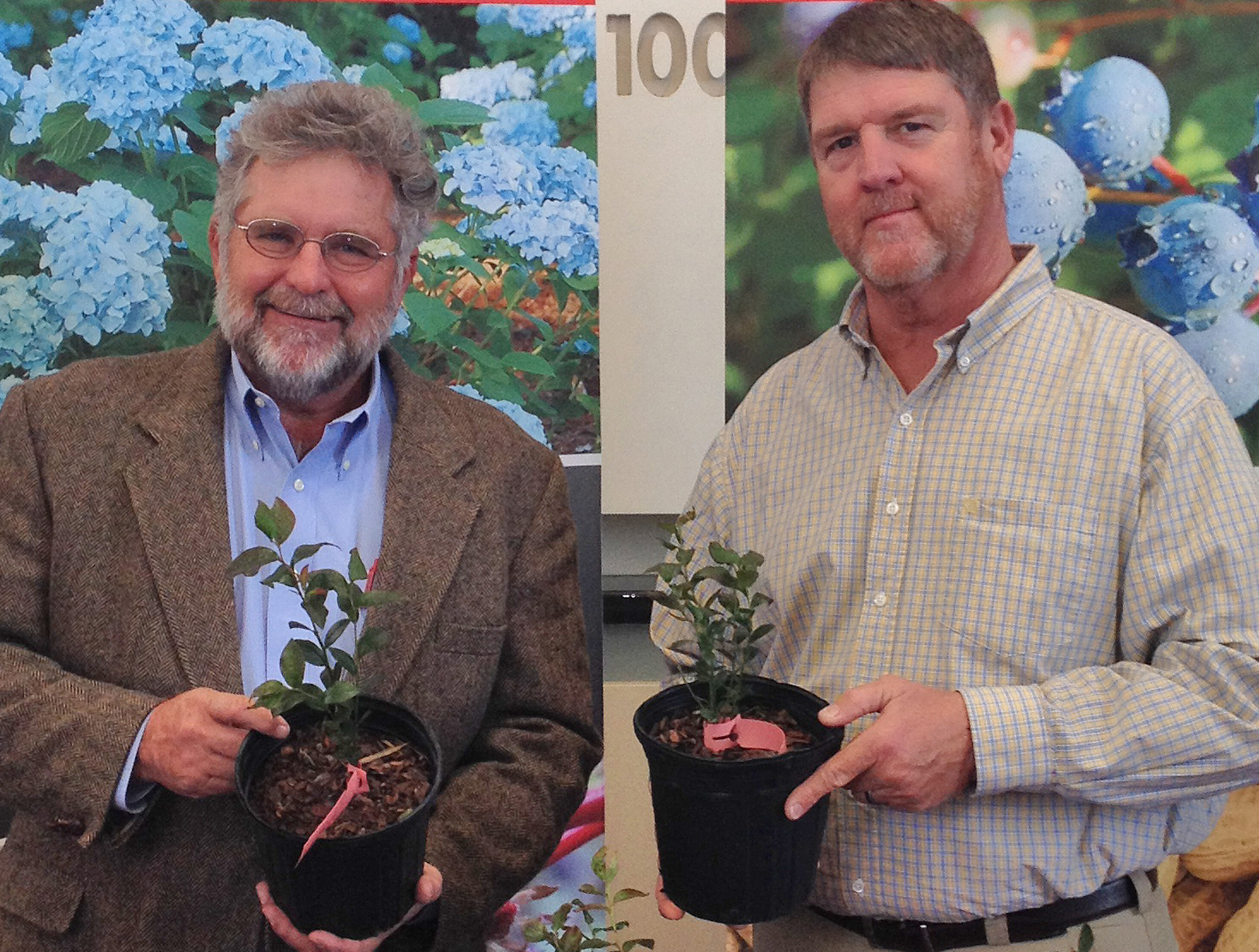 Retired UGA blueberry and small fruit horticulturist Gerard Krewer, left, holds a container of a new blueberry variety named in his honor. UGA blueberry breeder Scott NeSmith (right) named the new cultivar in honor of Krewer in recognition of his 20 years of service to Georgia's blueberry industry.