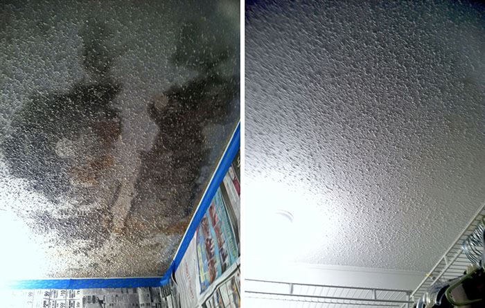 As a result of a roof leak, mold grows on the ceiling of a home.