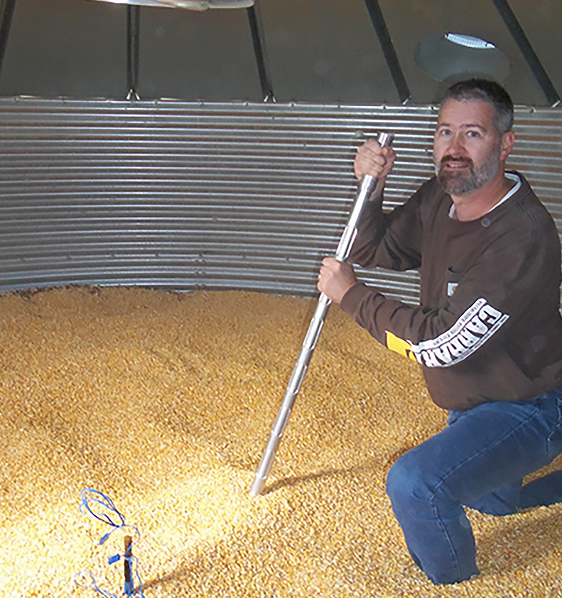 Mike Toews, entomologist on the UGA Tifton Campus, works in corn in a storage bin on campus.