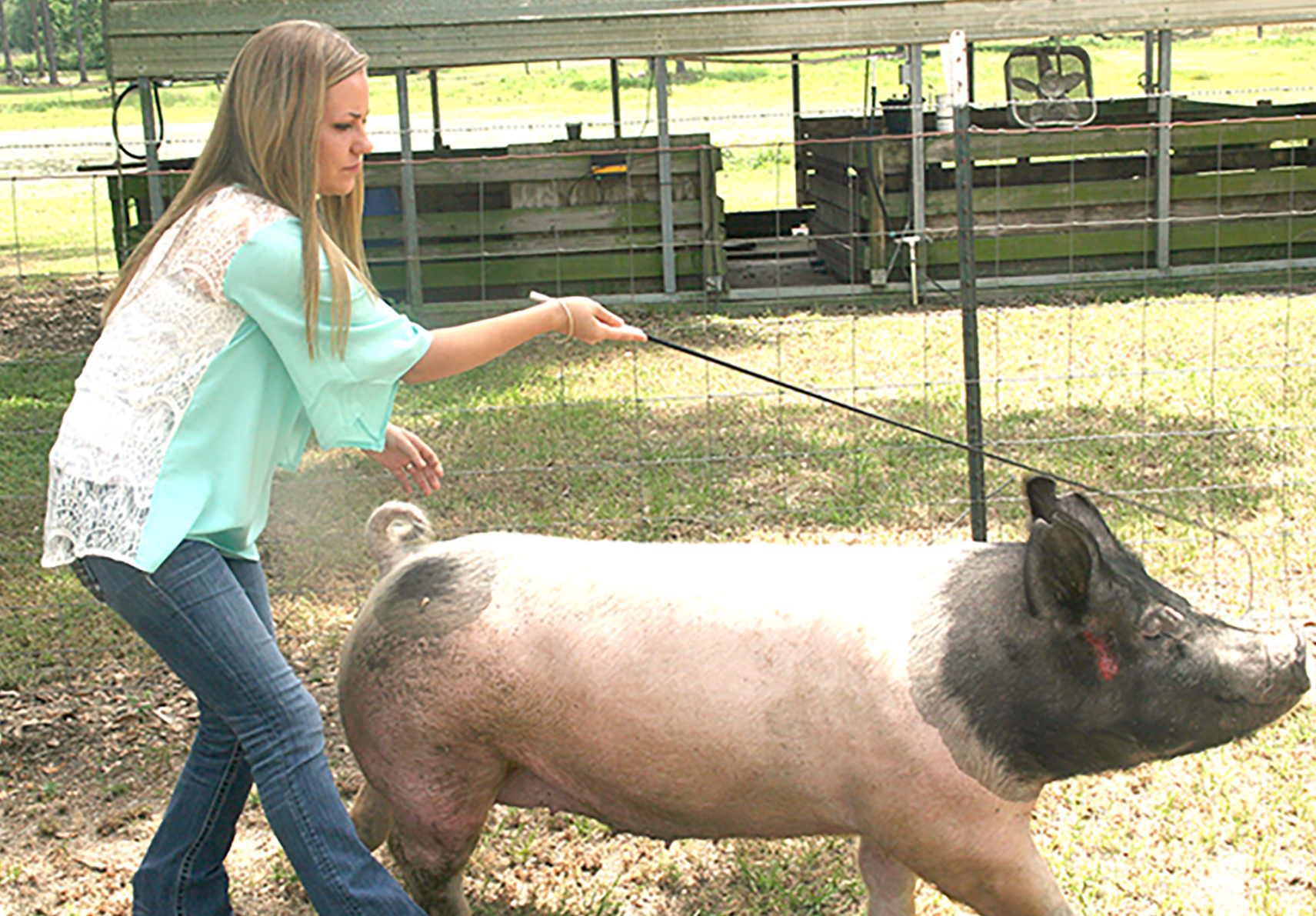 Courtney Conine walks her pig at her home in Camilla, Georgia.