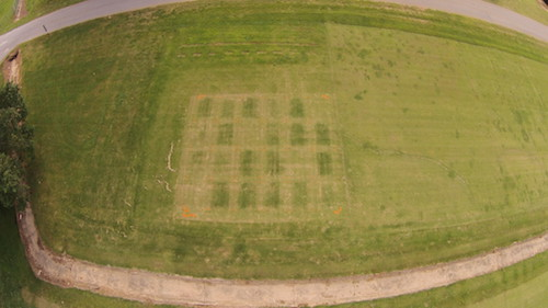 A photo take from an aerial drone shows the results of a turfgrass fertilization rate study.