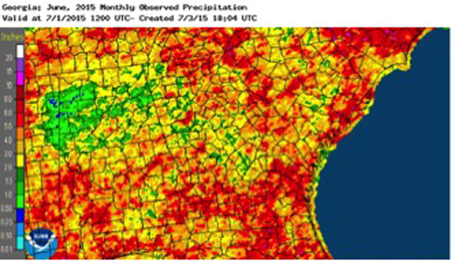 Some parts of Georgia received very little rain during June, which expanded drought conditions over parts of the state.