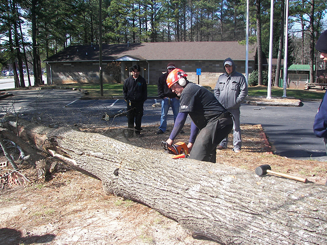Chainsaw trainings are being held across Georgia.