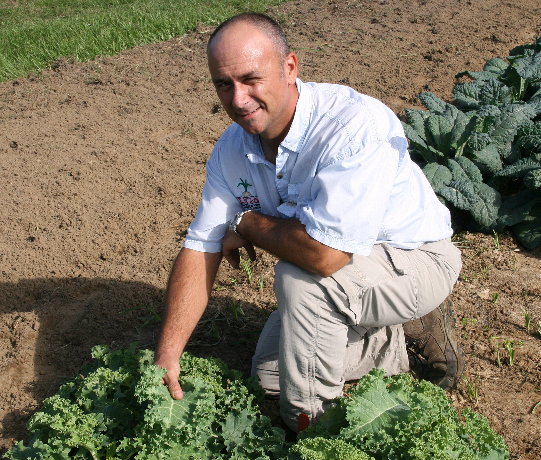 UGA horticulturist Tim Coolong poses for a picture alongside some of the kale he is researching on the UGA Tifton Campus.