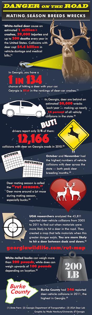 Deer infographic