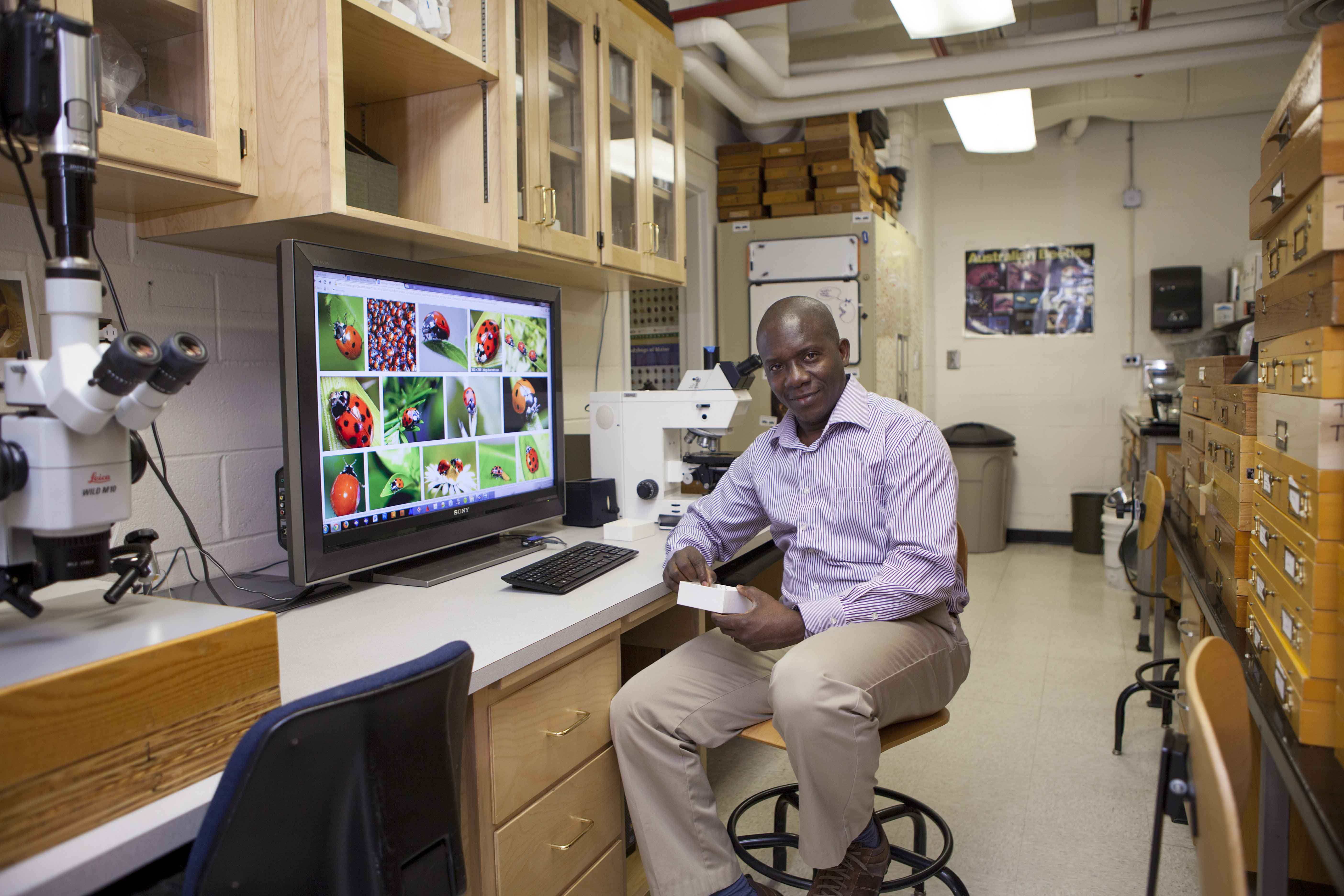 Brad K Hounkpati is shown in his UGA office with images of his lady bug collection shown on his computer screen.