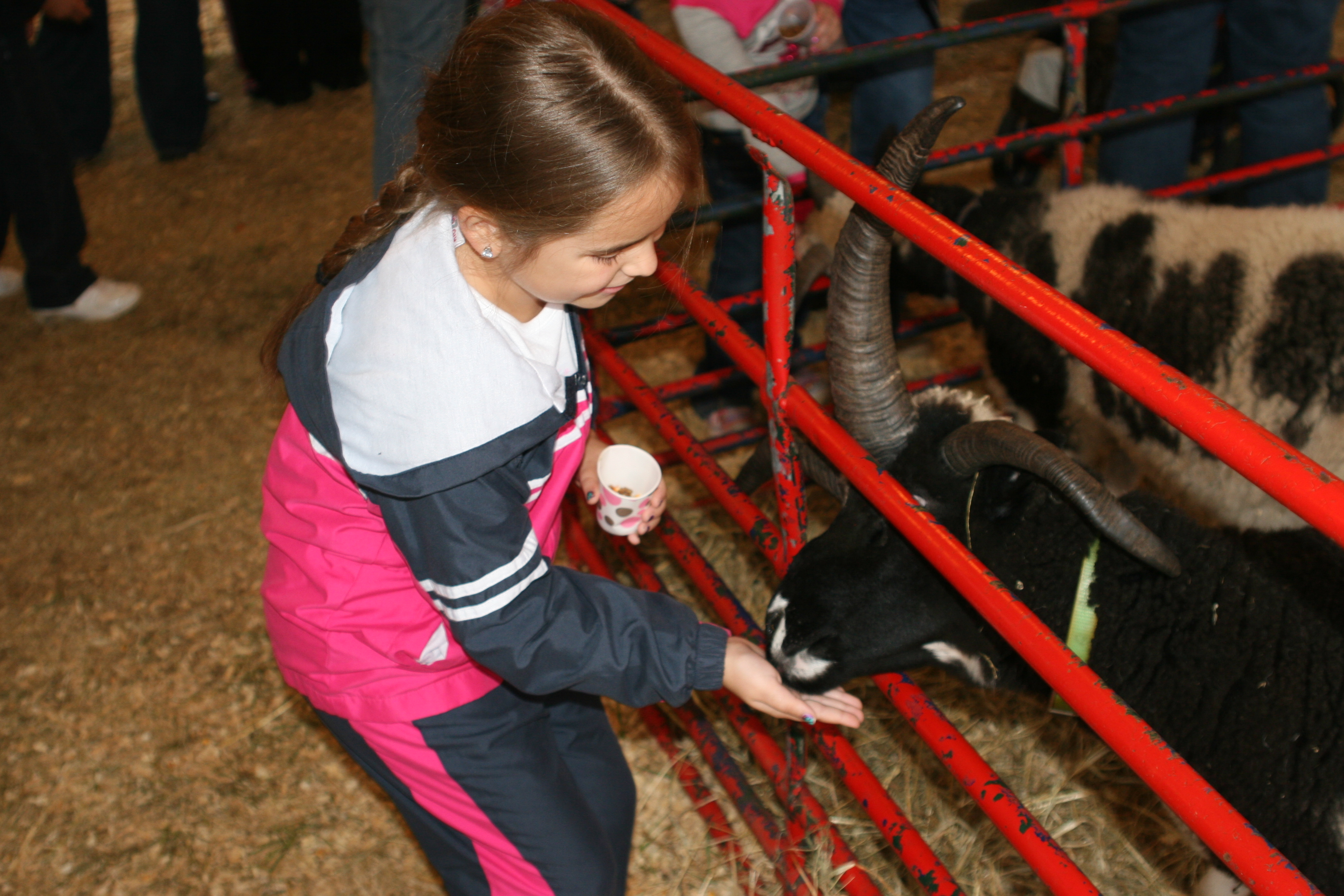 University of Georgia Cooperative Extension experts say washing hands after petting animals at fairs and festivals is a must. Petting zoos and farms can be a source of E. coli transmission. Reduce your risk of becoming ill by visiting hand-washing stations immediately and thoroughly washing your hands.