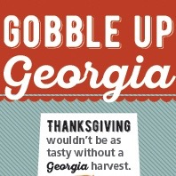 From green beans to turkey to pecan, Georgia farmers have you covered this Thanksgiving.