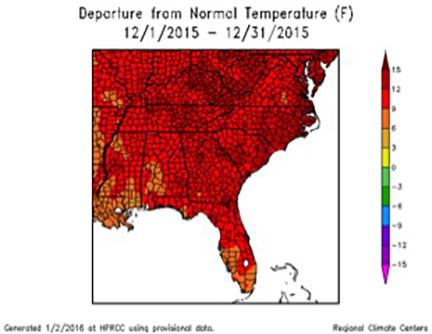 December 2015 Temperature