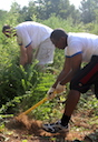Students in a University of Georgia College of Agricultural and Environmental Sciences class work hard to clear a piece of property set to be a community garden. A recent UGA study shows students like these, who enjoy learning by doing for others, will likely earn more than their peers in the same field.