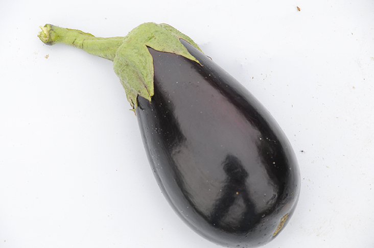 Pictured is an eggplant fruit.