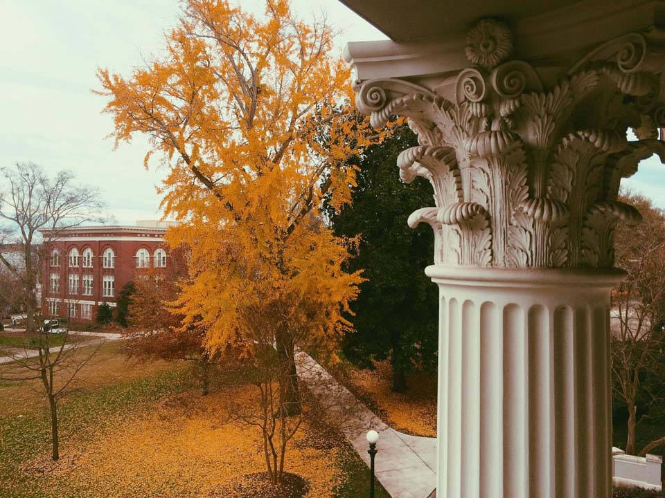 Katharine Rose Hall, a senior studying communication sciences and disorders in the UGA College of Education, juxtaposed the crown of a North Campus Ginkgo tree with one of the UGA Holmes-Hunter Academic Building's Corinthian columns in her first place photo.