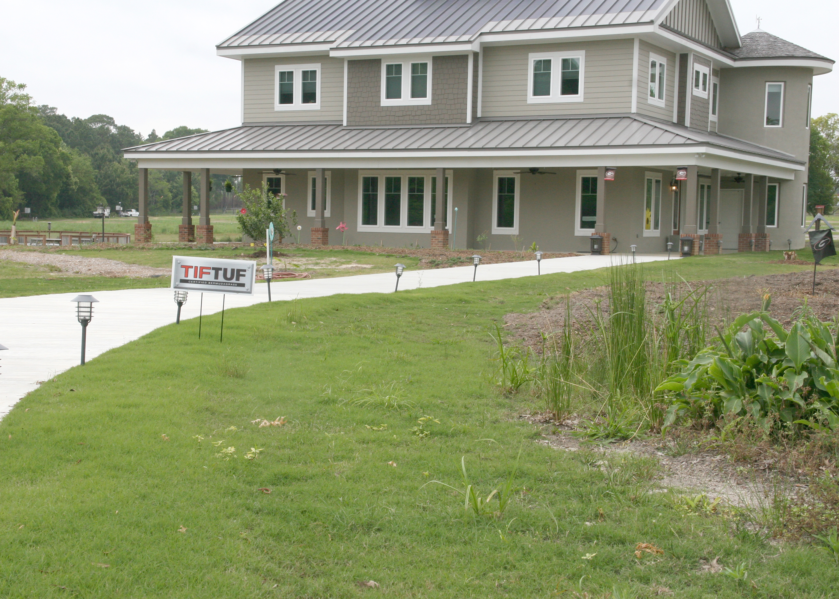 'TifTuf' turfgrass is planted in front of the Future Farmstead on the UGA Tifton Campus Conference Center.