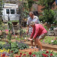 The public is invited to the Trial Gardens at UGA's annual open house on Saturday, June 8, from 9 a.m. to noon.