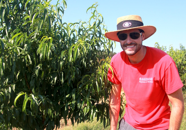 On the University of Georgia campus in Griffin, Georgia, UGA doctoral student Bruno Casamali is testing different irrigation methods and fertilization rates to give Georgia growers advice on how to grow peaches more efficiently.