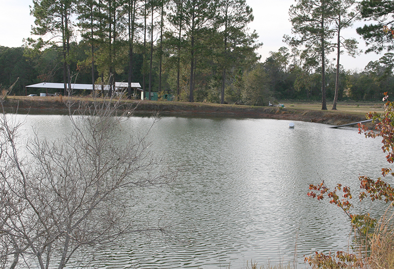 Pictured is a pond with low water on the UGA Tifton Campus at the Lang-Rigdon Farm, due to the drought. Date: Nov. 9, 2016