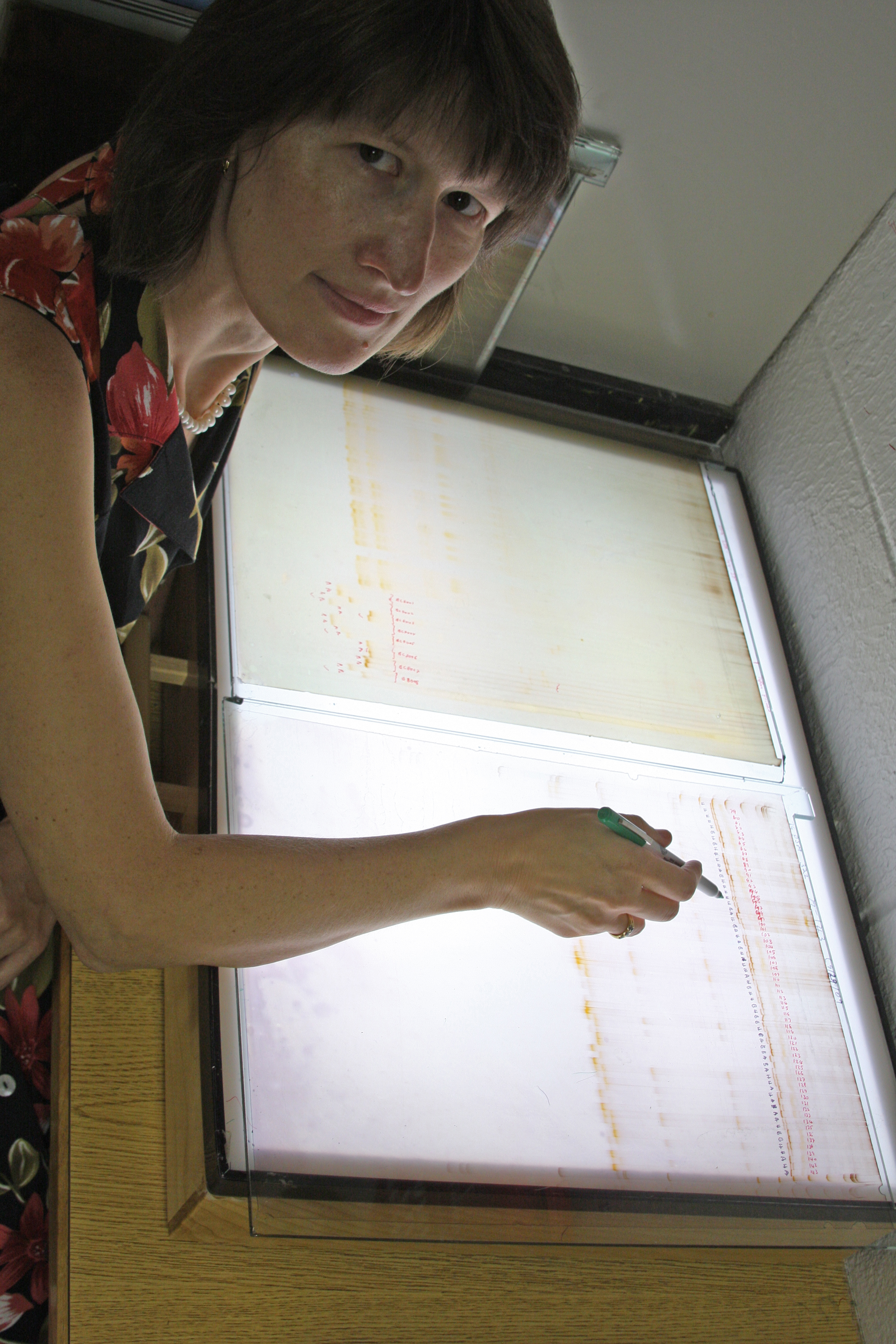 Professor Katrien Devos works as at a light table. Devos is a professor in the UGA Department of Crop and Soil Sciences and the Department of Plant Pathology, and she was recently named a fellow for the American Association for the Advancement of Science.