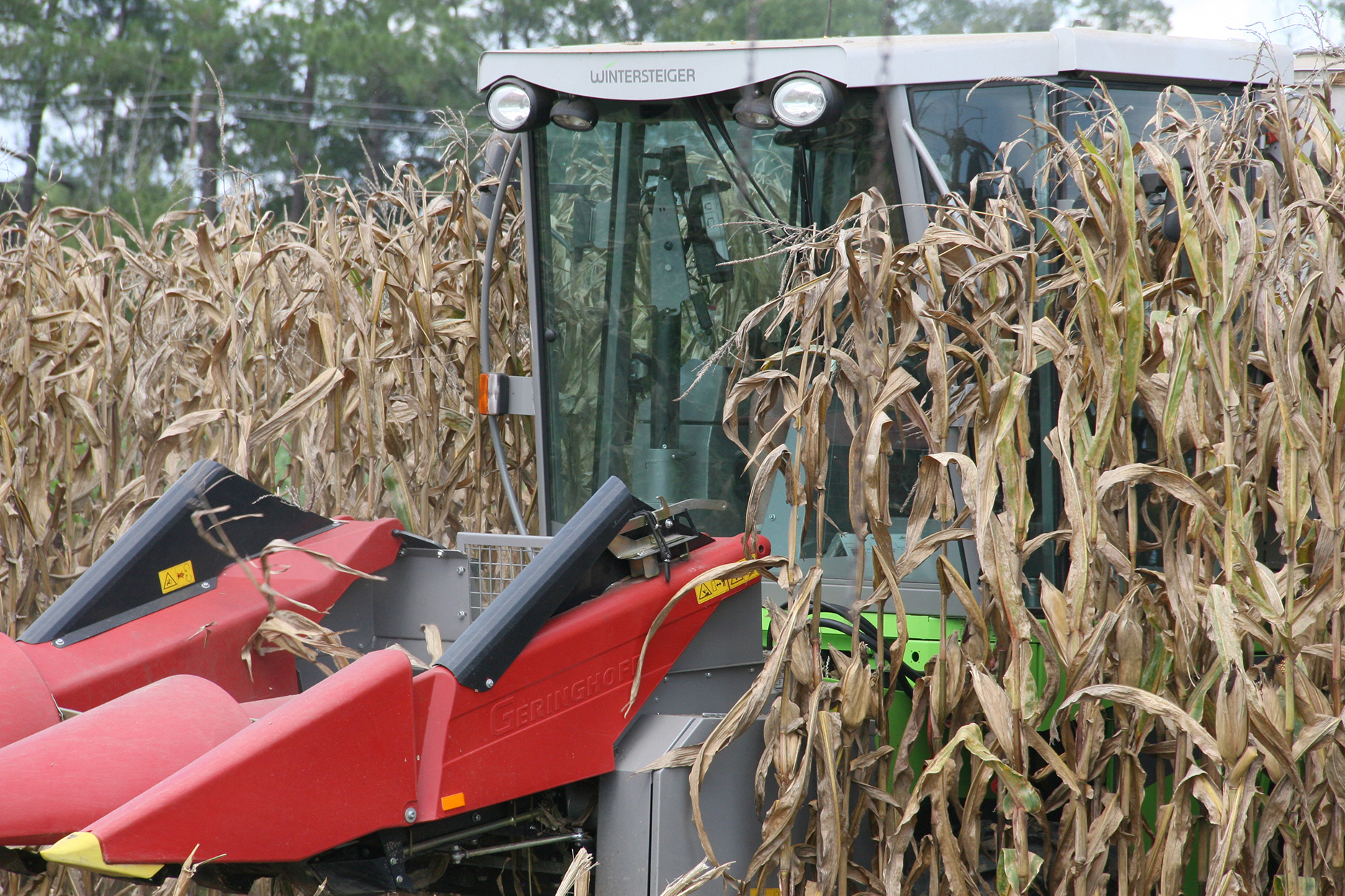 Following this harvest season, corn farmers reported yields between 8 and 12 percent below average.