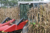 Corn being harvested on the UGA Tifton campus in 2016.