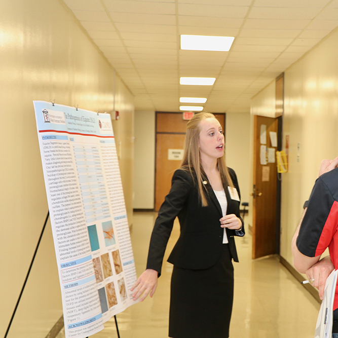 Madeline Young, a senior studying animal health and biological sciences at the UGA College of Agricultural and Environmental Sciences, presents her research into degenerative ligament disease in horses at the CAES Undergraduate Research Symposium on April 12.