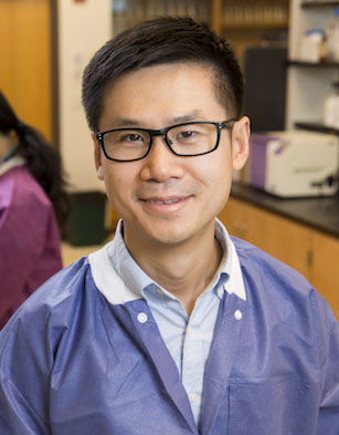 UGA researchers Xiangyu Deng (shown) and Shaokang Zhang led a team of scientists who have trained an algorithm called Random Forest to predict certain animal sources of S. Typhimurium genomes.