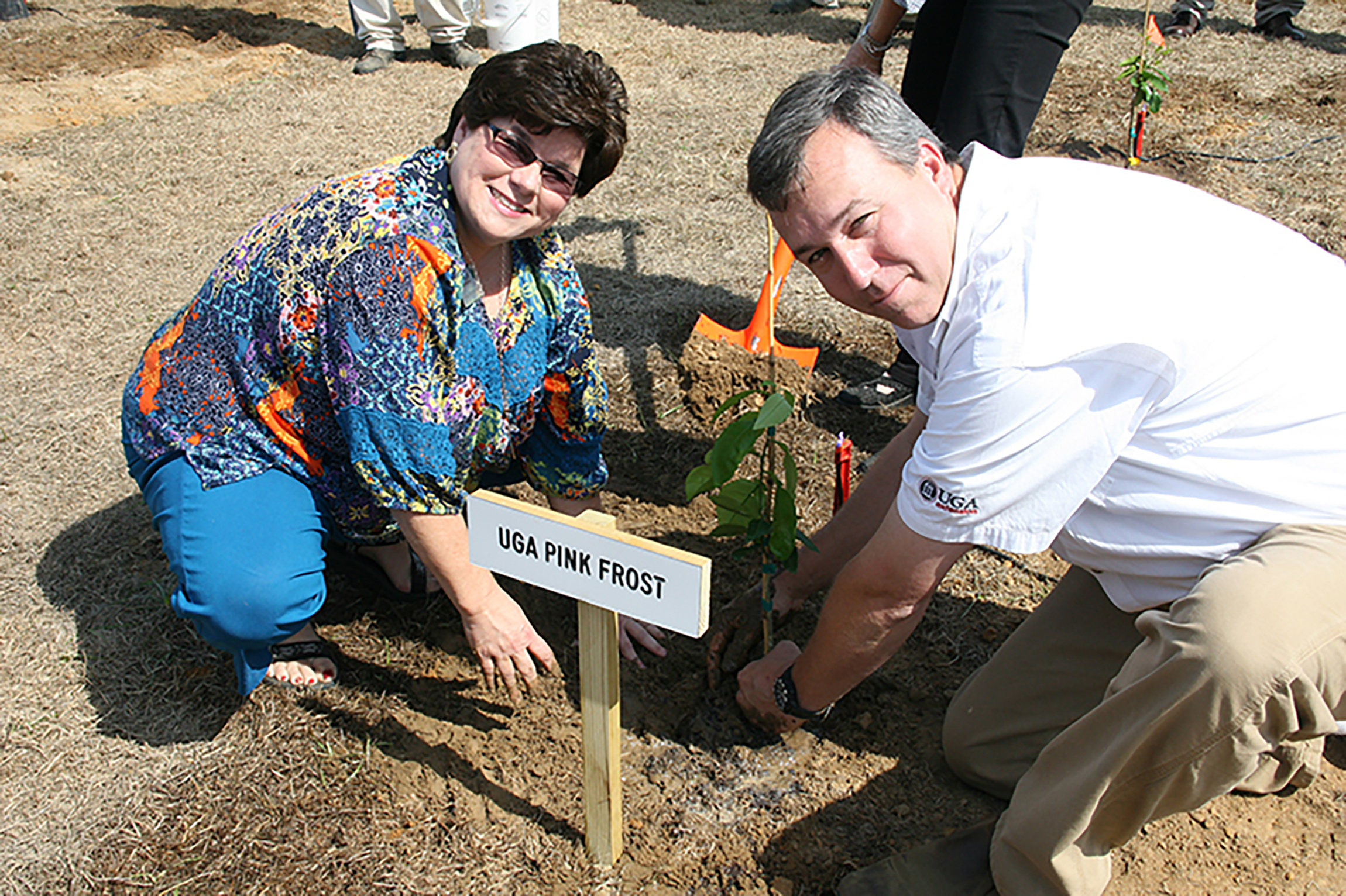Mitchell County Extension Coordinator Jennifer Grogan and Grady County ANR Agent Brian Hayes plant a citrus tree.