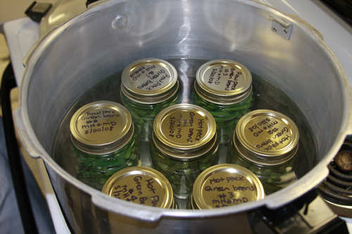 Canning beans in a pressure canner. May 2008.