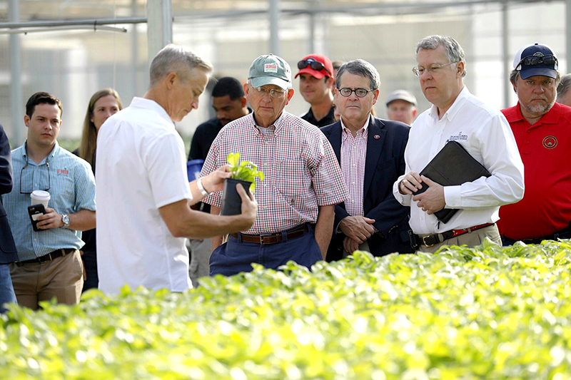 Ken James, owner and founder of James Greenhouses and University of Georgia alumni, talks about a hosta plant with (left to right) Agriculture Commissioner Gary Black, UGA President Jere Morehead, and CAES Dean Sam Pardue in a production house at James Greenhouses in Colbert on the UGA Georgia Farm Tour.